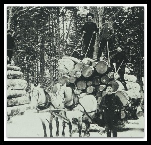 Drawing Logs in Reynoldston ca. 1900 s